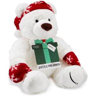 amazon100-gift-card-with-a-holiday-teddy-bear-limited-edition-amazon-com-gift-cards-see-more-at-icangwp-blog