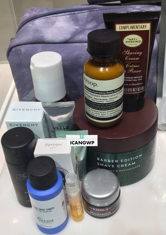 barneys beauty event free sample bag 2017 see more at icangwp beauty blog your gift with purchase destination.JPG-resized.jpg