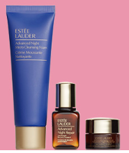 estee lauder Gift with Purchase fall gift at Nordstrom