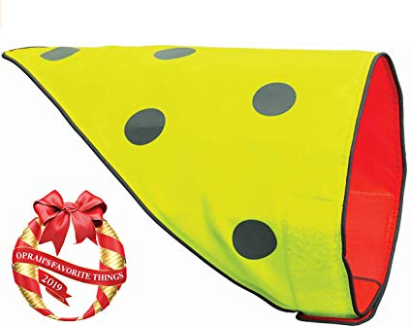 Amazon.com Spot the Dog Flip Orange and Yellow Reversible Protective Bandana Pet Supplies