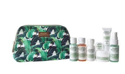 beauty Gift with Purchase Nordstrom mario badescu icangwp