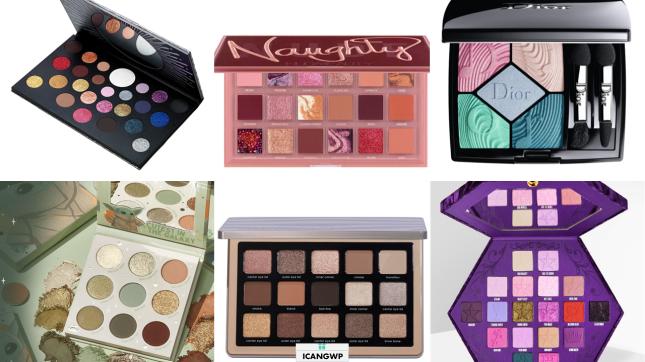 best eyeshadow palettes 2020 icangwp